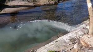descarga de poluição rio Jamor